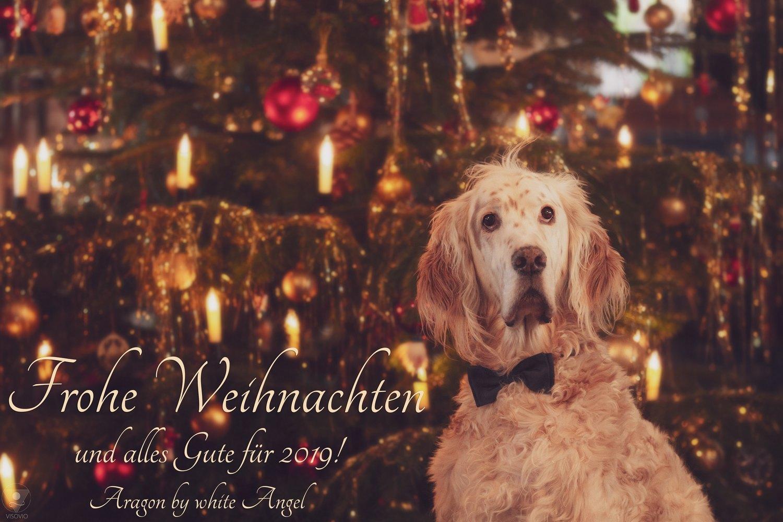 Weihnachtsgrüße Jagdlich.News 2018 English Setter Angels