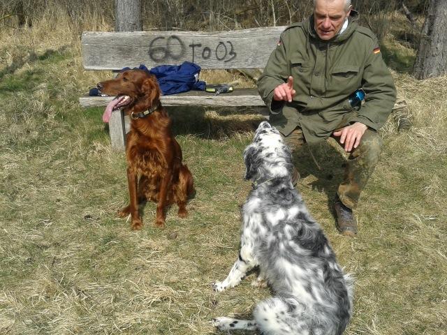 Gianna beim Gehorsamstraining......ein Hund lernt niemals aus!!