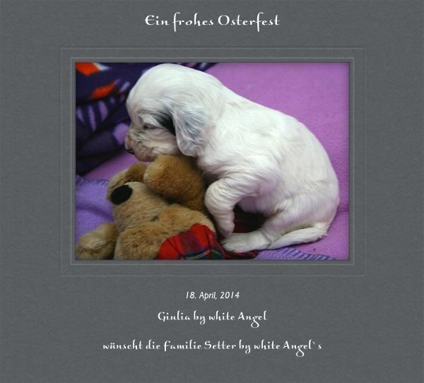 Guilia by white Angel: Ein Frohes Osterfest! www.angel-setter.de