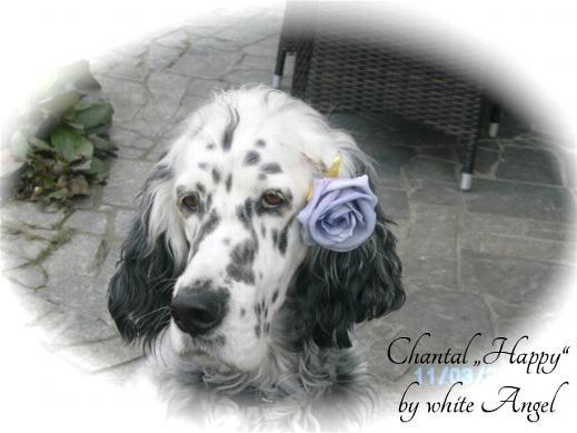 """Happy"" Chantal by white Angel"