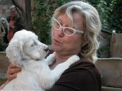 """""""Alina"""" Doreas Brown Suger, die Stammmutter der Setter Angels  mit Karin in Österreich"""