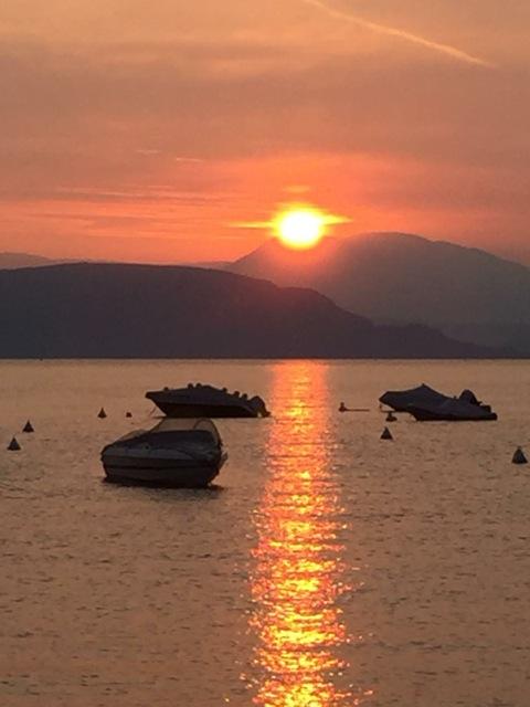 Von Setter- Freunden wurde mir dieser schöne Sonnenuntergang gesendet,Danke. Eure English Setter Familie.