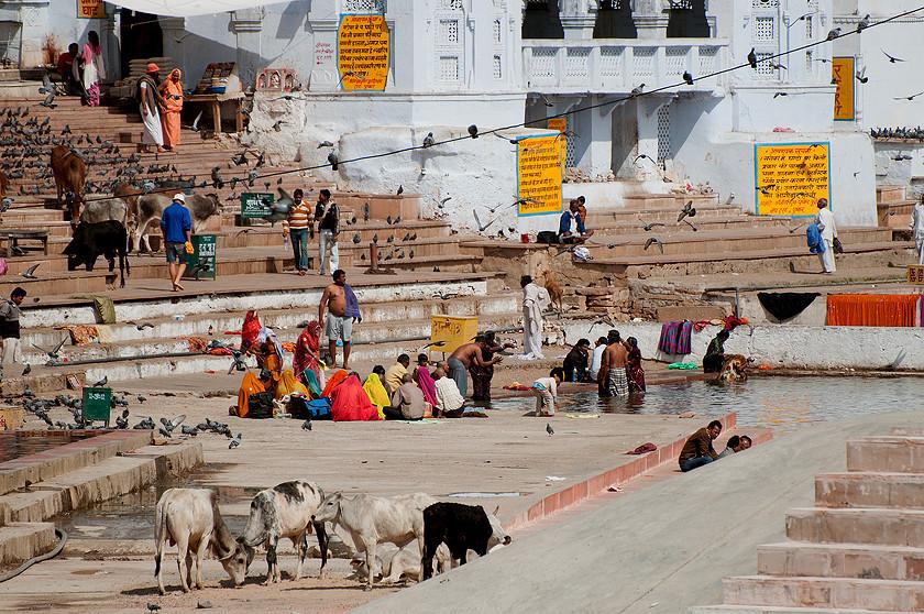 Heilige Pushkar See