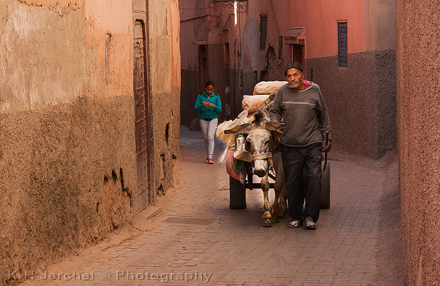 Eselskarre, Marrakesch Streetlife