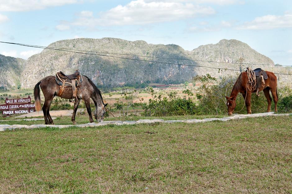 Ausritt im Tal von Viñales