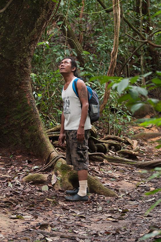 Mein Guide, Leuser Nationalpark