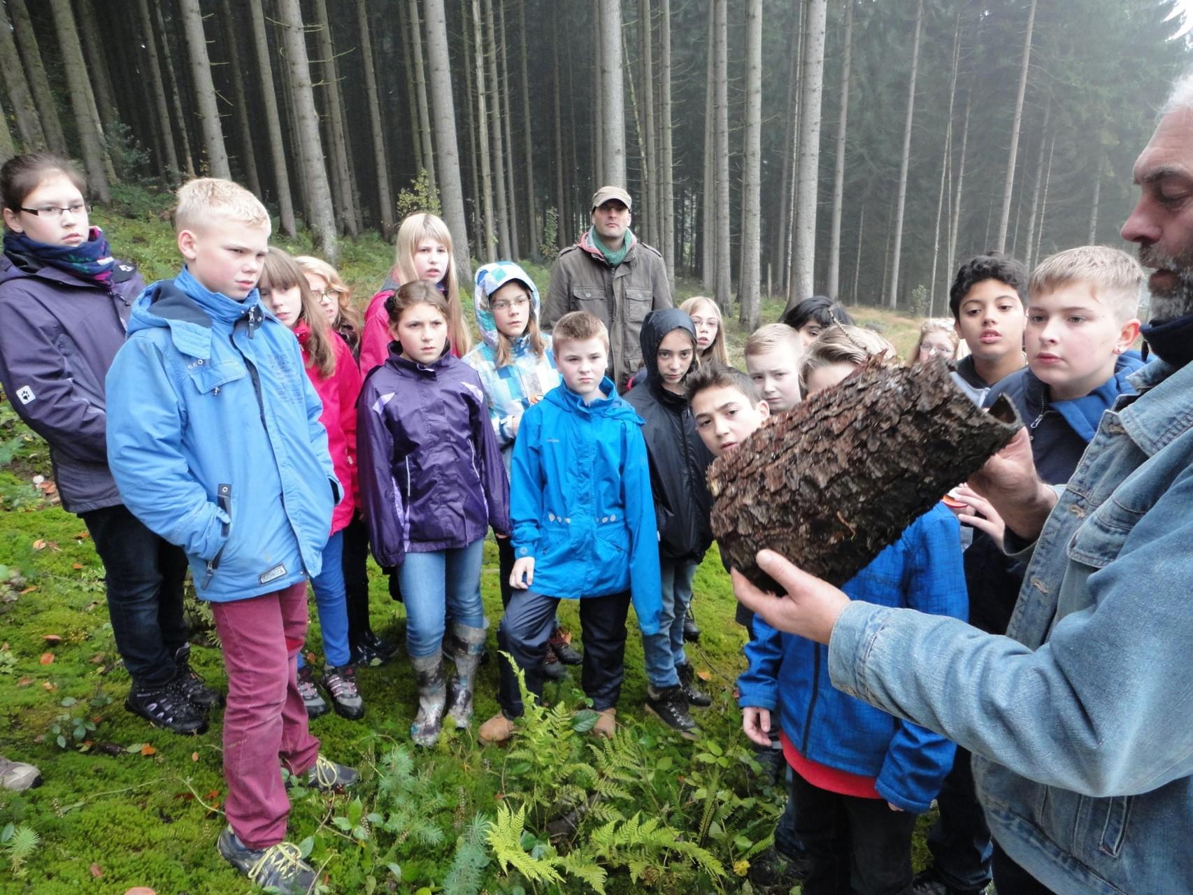 Erlebnisraum Wald