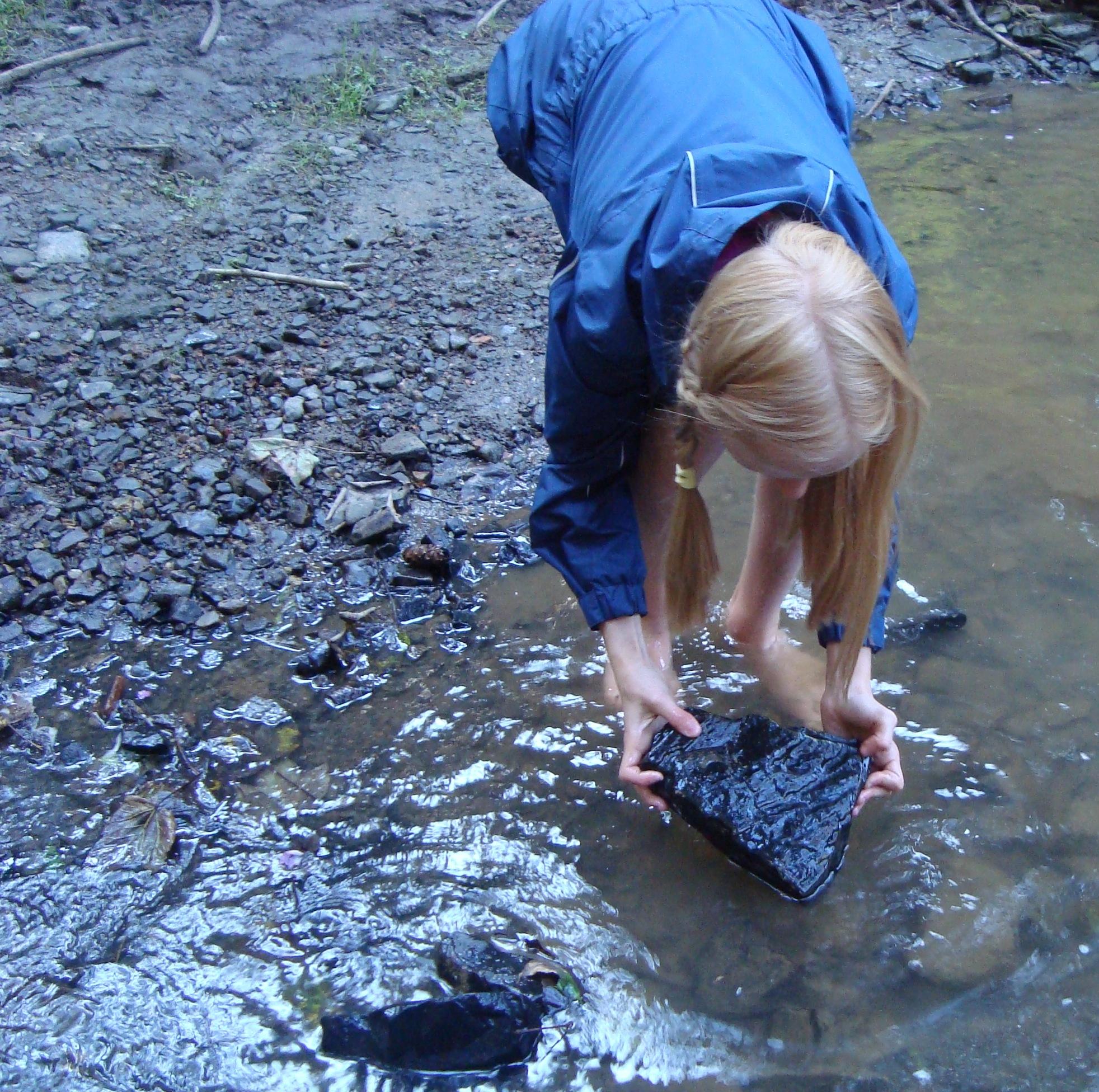 Unter Steinen nach Tieren suchen