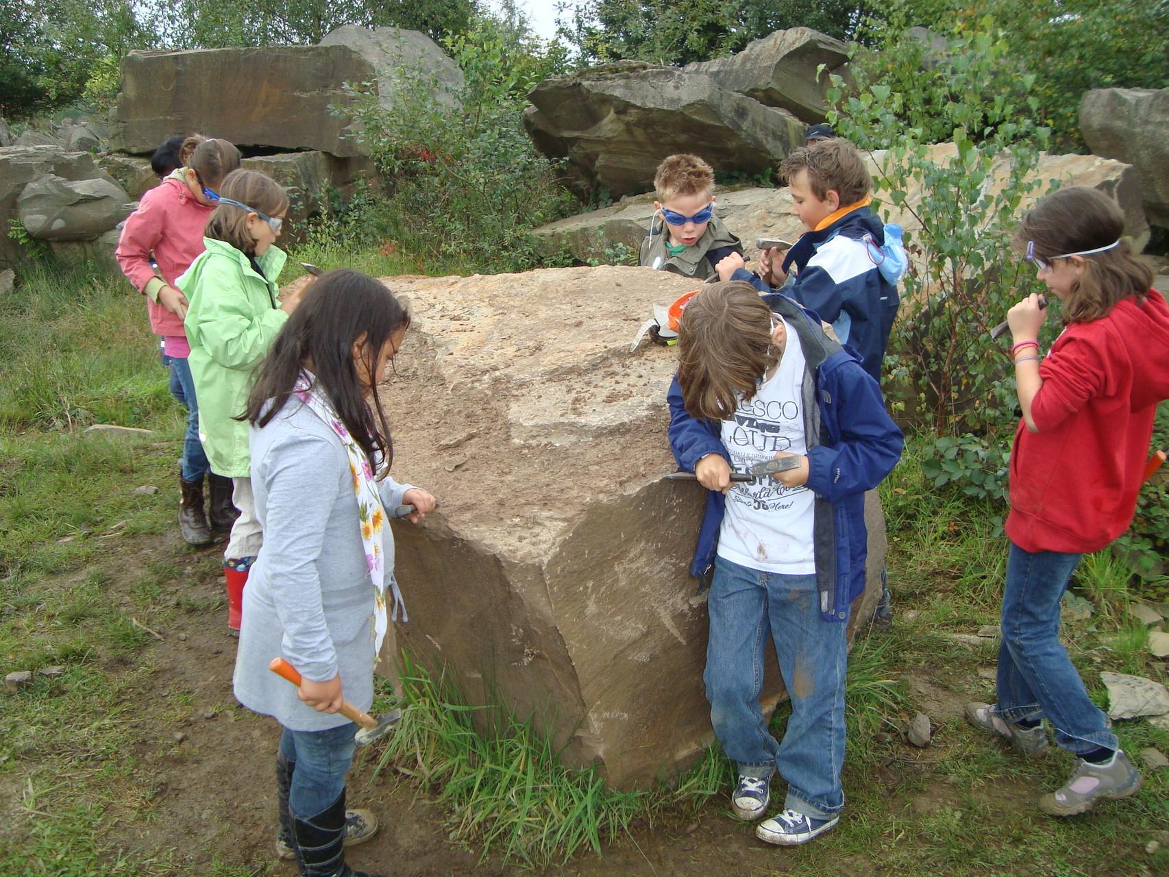 Fossiliensuche im Steinbruch