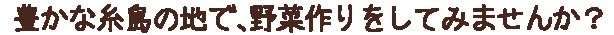豊かな糸島の地で、野菜作りをしてみませんか?