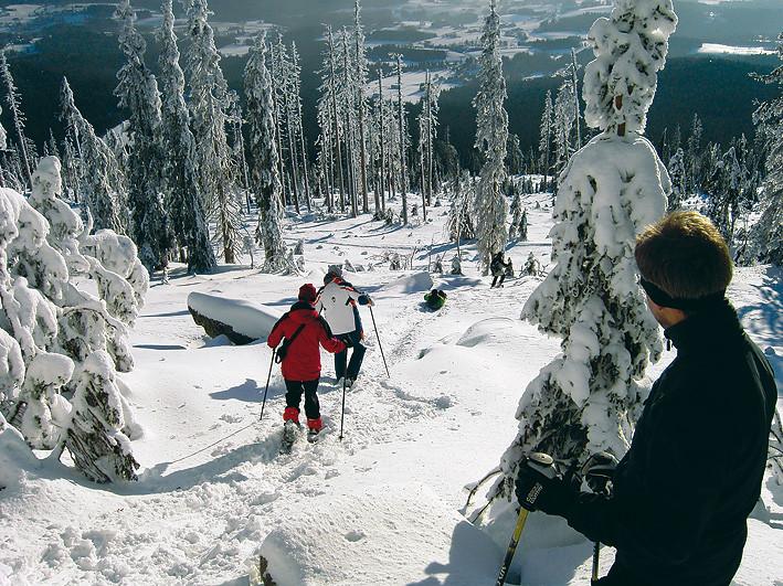 Schneeschuhgehen am Dreisessel