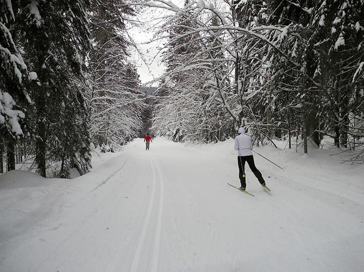 Langlaufen und Skaten