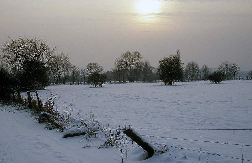 Verschleierte Sonne im Winter