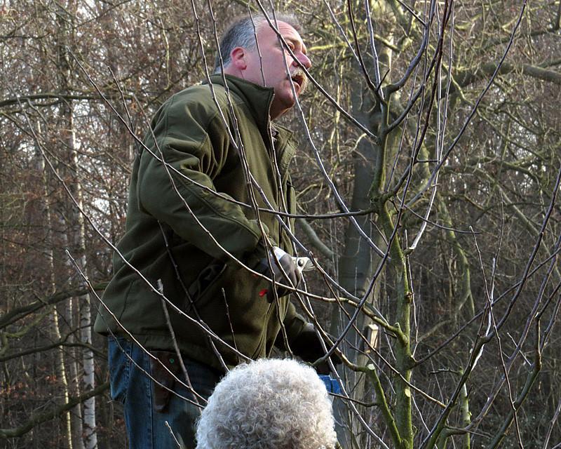 Herr Zepernick mitten im Baum