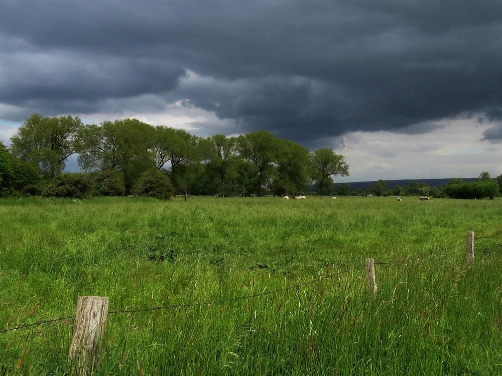 Dunkle Herbstwolken über der Niederung
