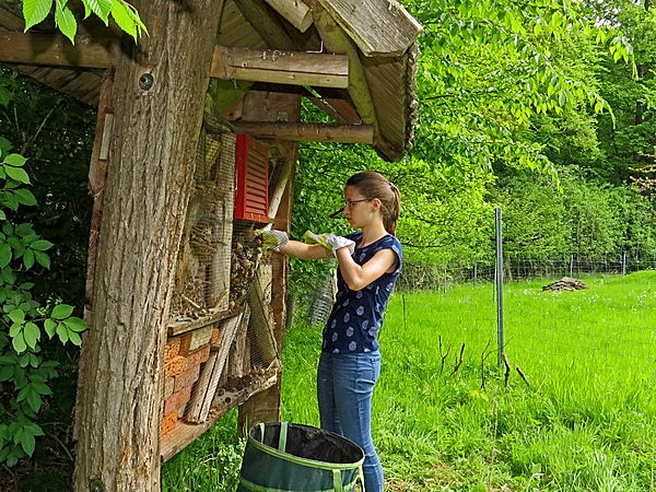 Lale kümmert sich um die Insekten-Nisthilfe am Rand der Streuobstwiese.