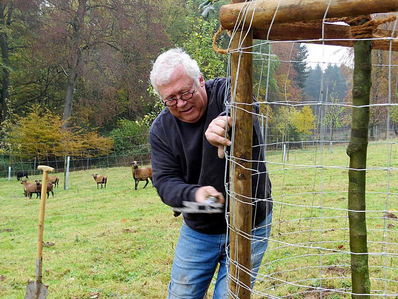 """Damit unsere vierbeinigen """"Rasenmäher"""" nicht die leckere Rinde abnagen"""