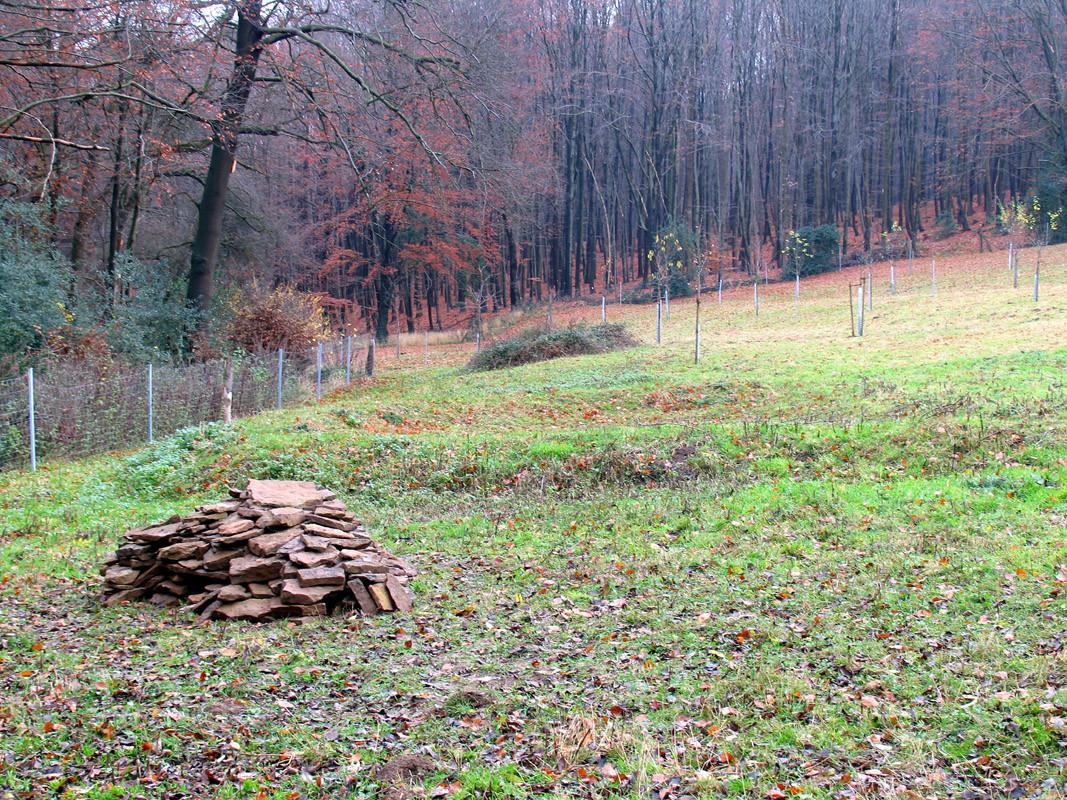 Im November bauten wir diesen Steinhaufen neben eine der Blänken