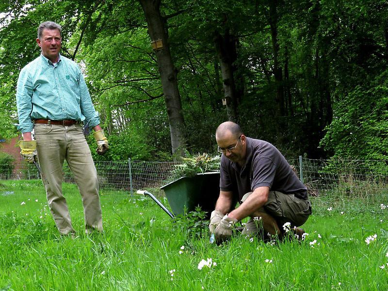 Gerd und Peter entsorgen die Disteln