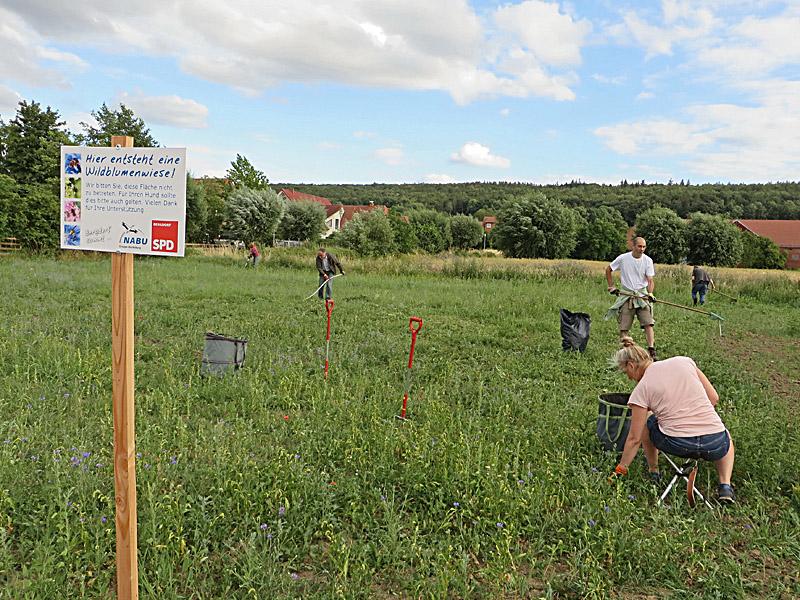 Das ist die Fläche in Bergdorf, An den Weiden