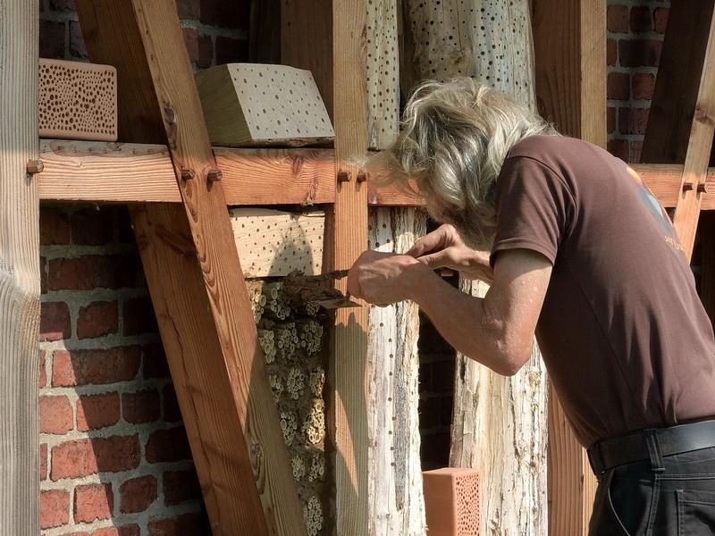 Holz, Rohr und Stein: Für jeden Geschmack der Wildbienen ist gesorgt