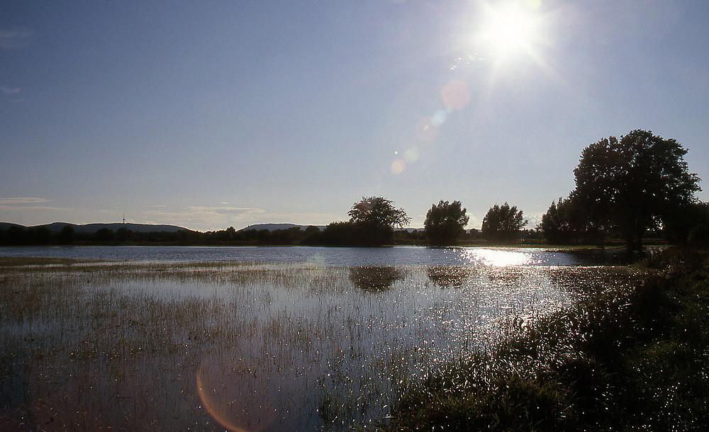 Hochwasser nach einem Sommergewitter