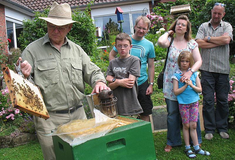 Die Waben können aus den Bienenkästen herausgenommen werden