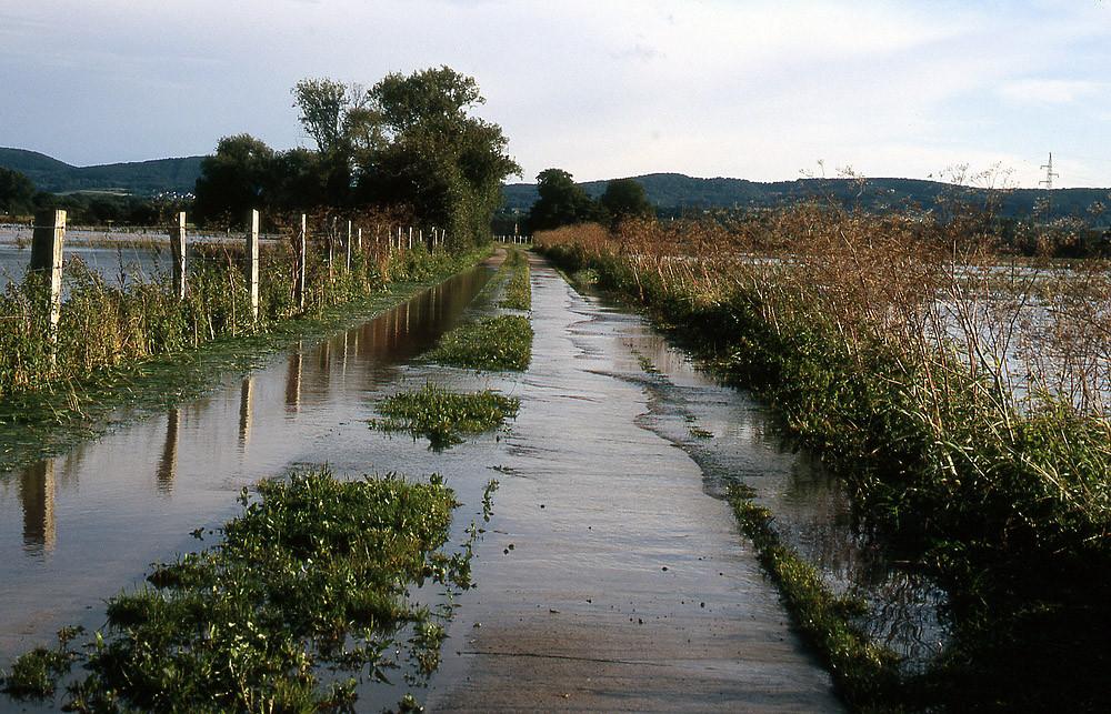 Hochwasser nach Starkregen im Sommer
