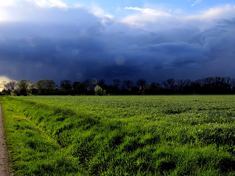 Ein Unwetter nähert sich der Niederung