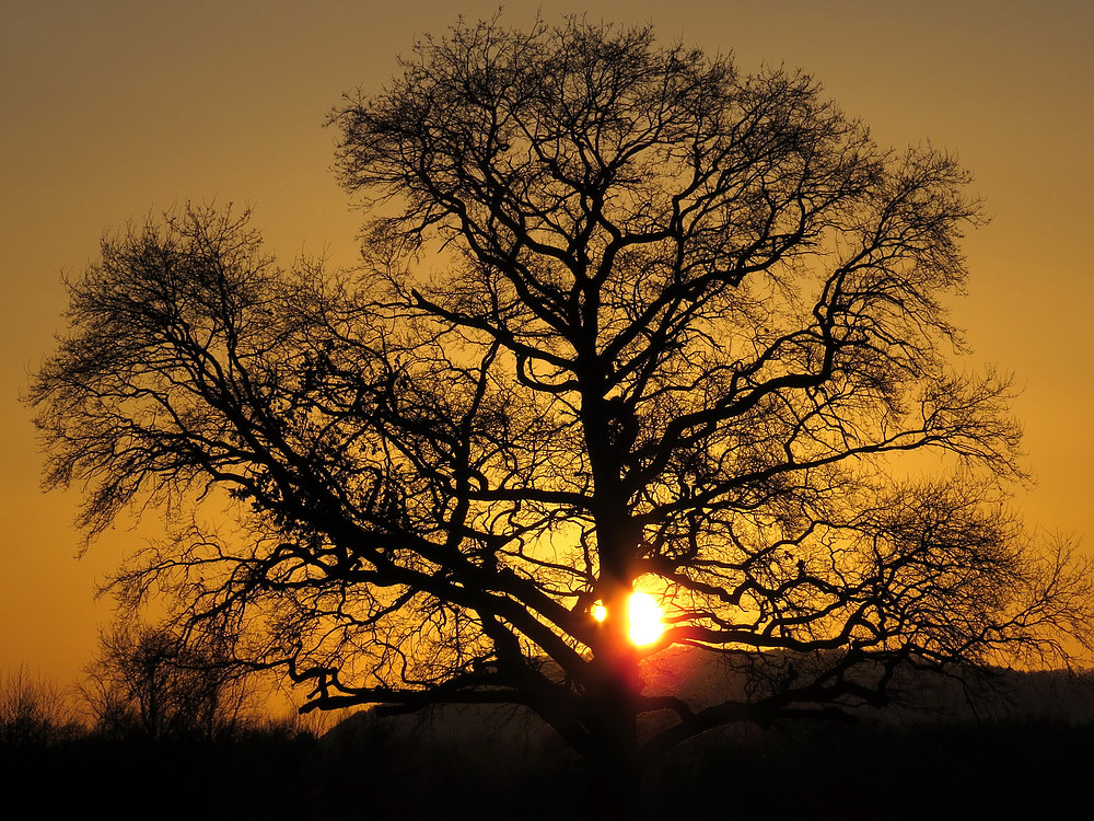Sonnenuntergang ím Winter
