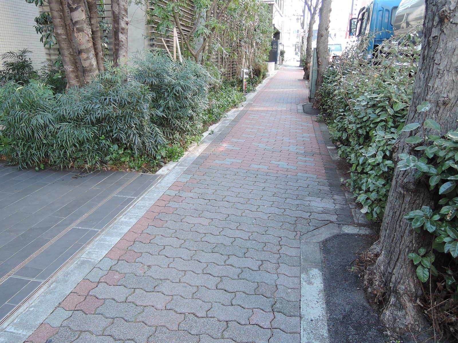 マンション前の歩道