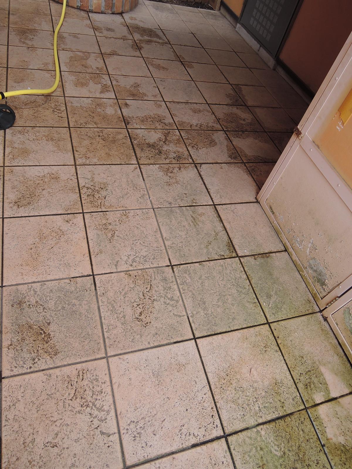 連日雨があたっていた床にも