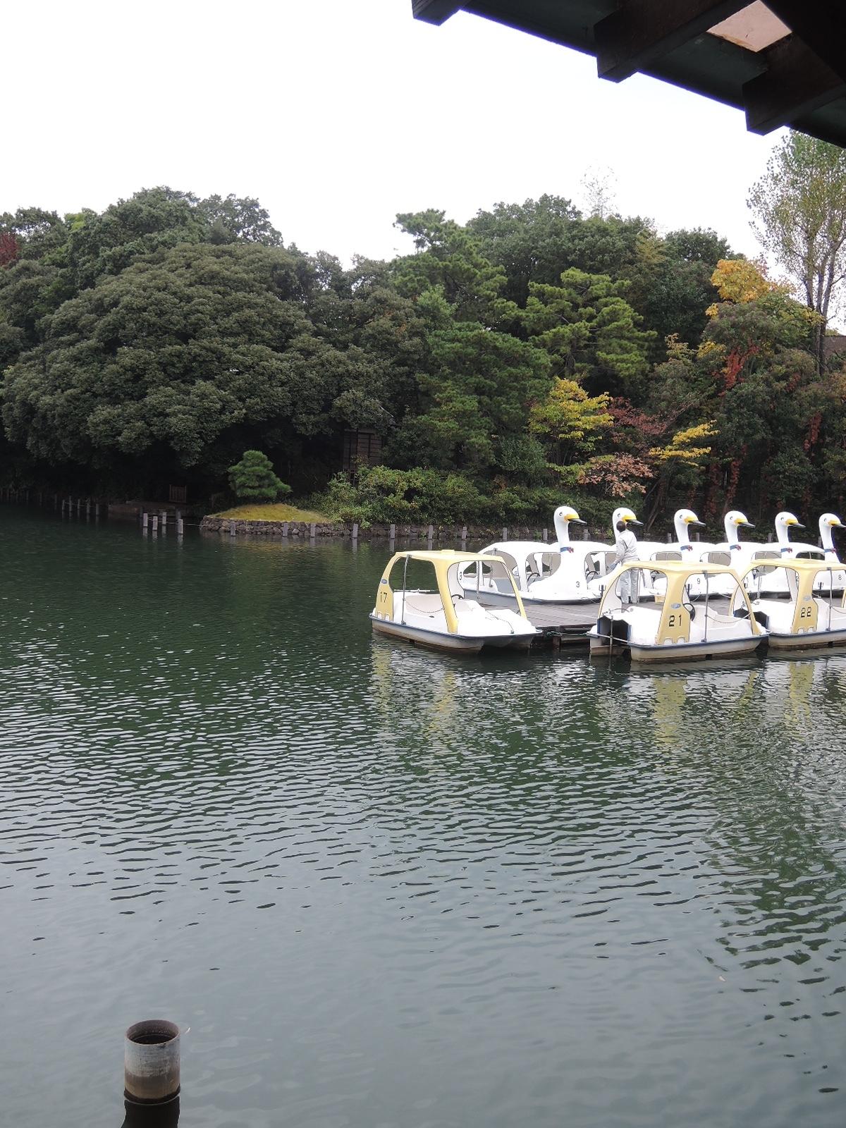 池のほとりにはボートが整列