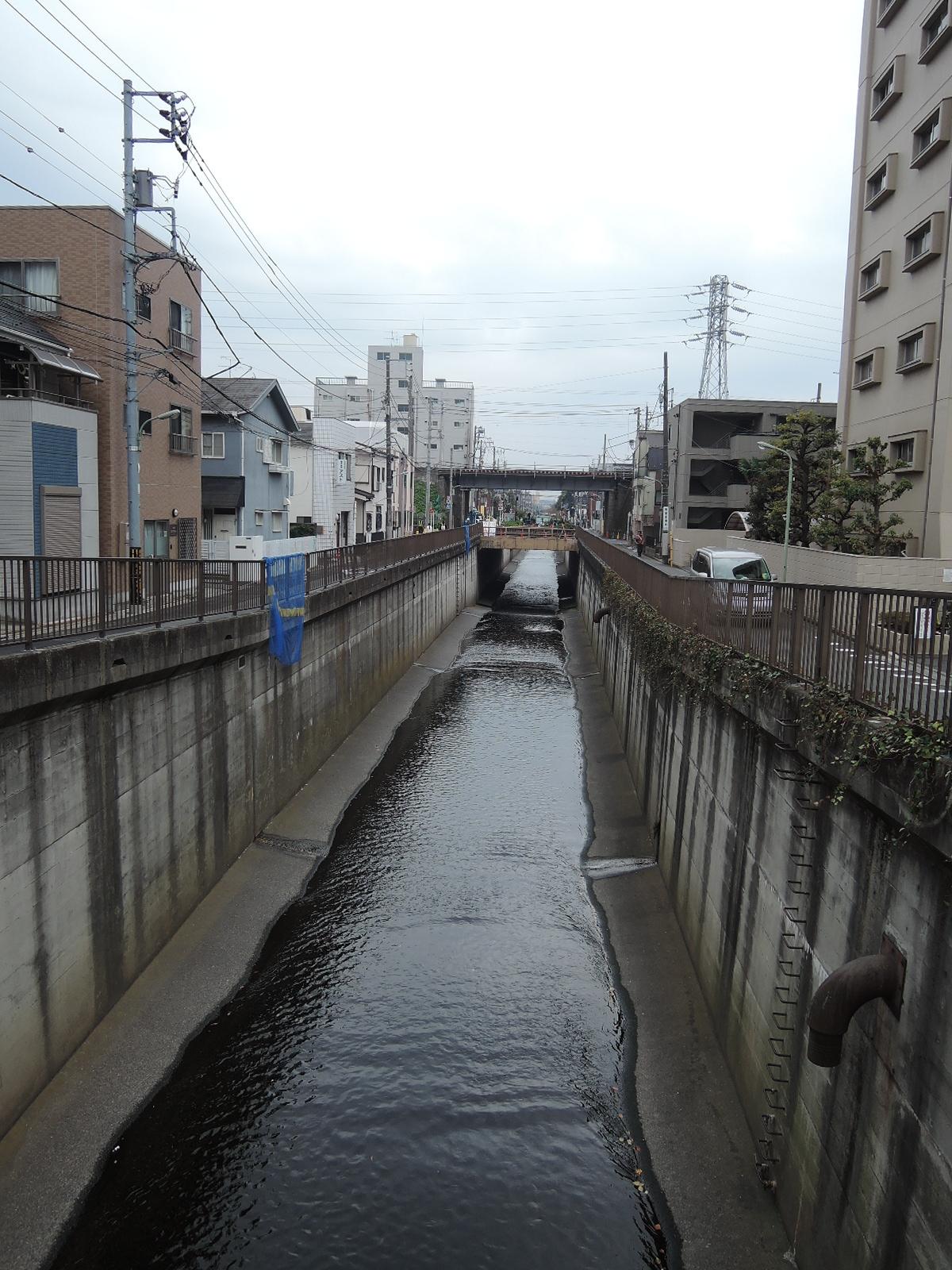 呑川を渡ります