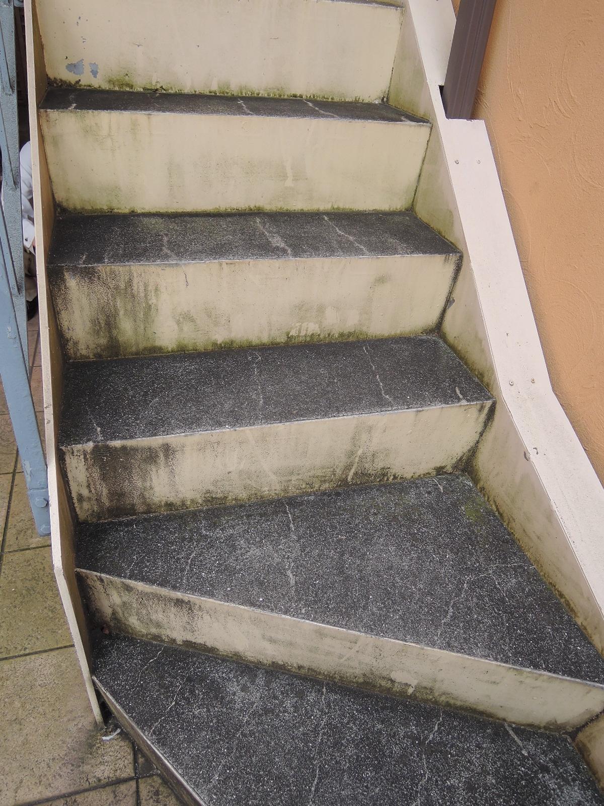 階段の雨で濡れる部分に緑色の苔が