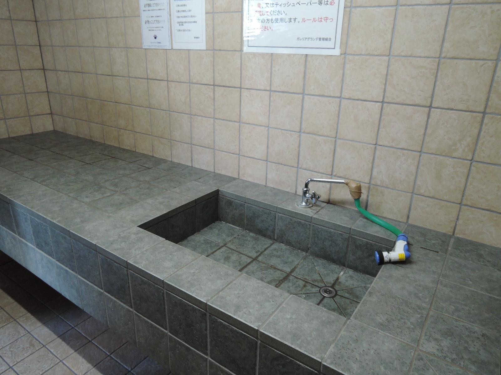 中には広い洗い場