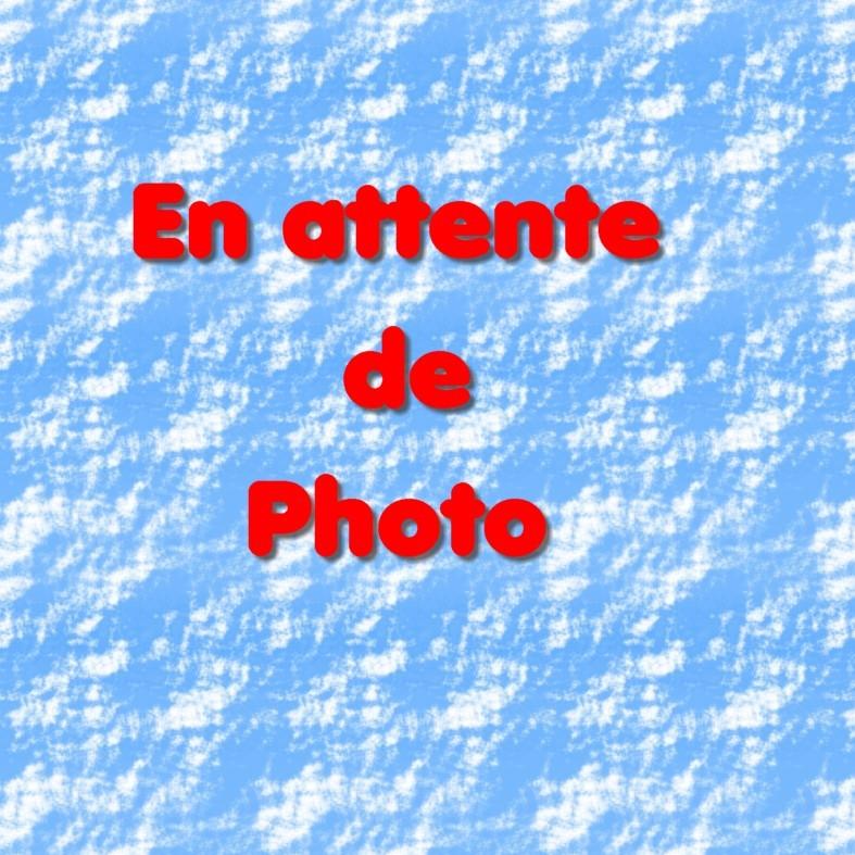 Christine Bluy (89400 - Migennes)