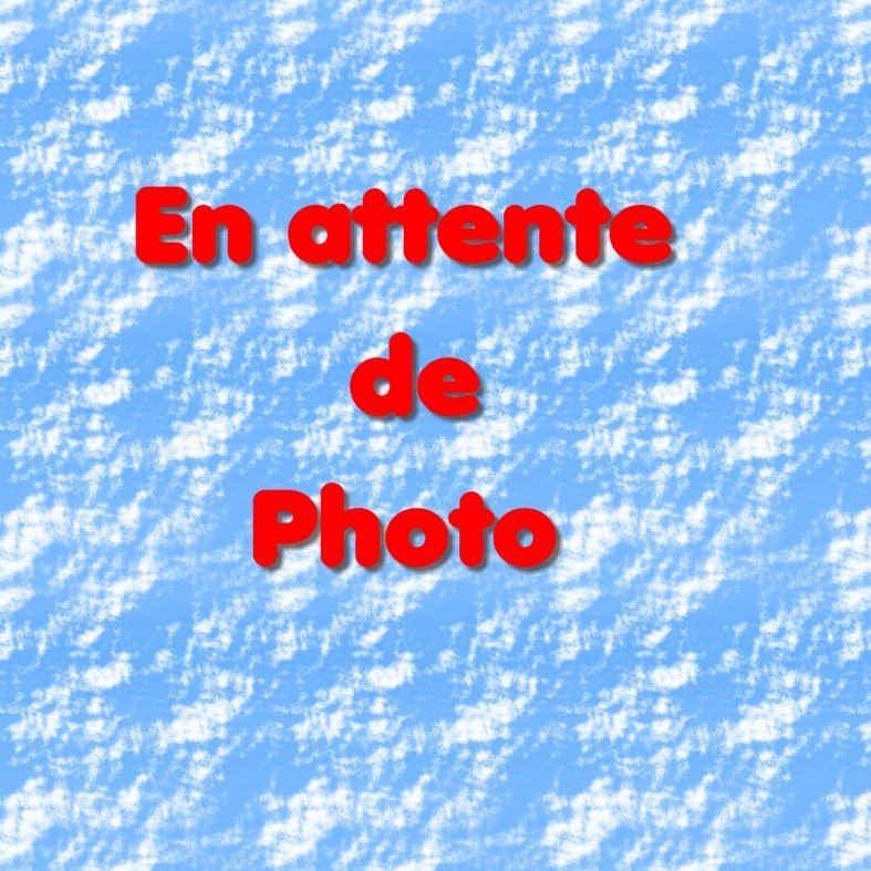 Bénédicte Perreau (92300 - Levallois)