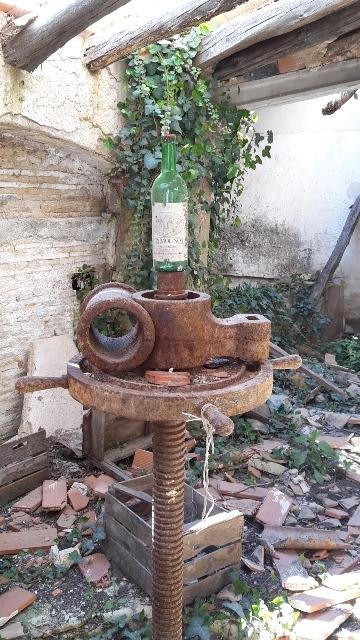 Im Inneren erwarten uns alte Wein- und Ölpressen.