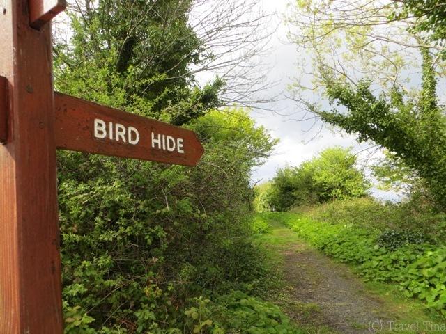 Der Pfad zum Birds Hide.