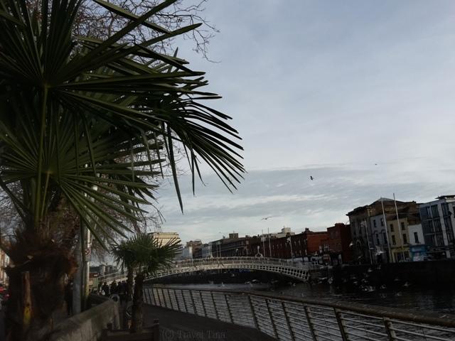 Sommerfeeling in Dublin.