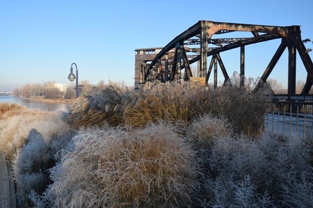 Frostige Spaziergänge entlang der Elbe mit Blick auf die Hubbrücke.