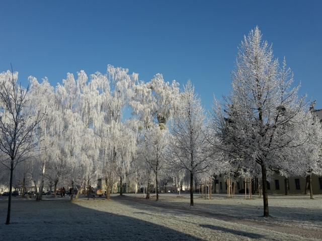 Alles eingefroren auf dem Campus.