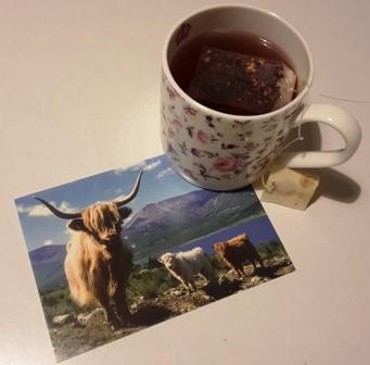 Post von der Insel - Post von A decent cup of tea.