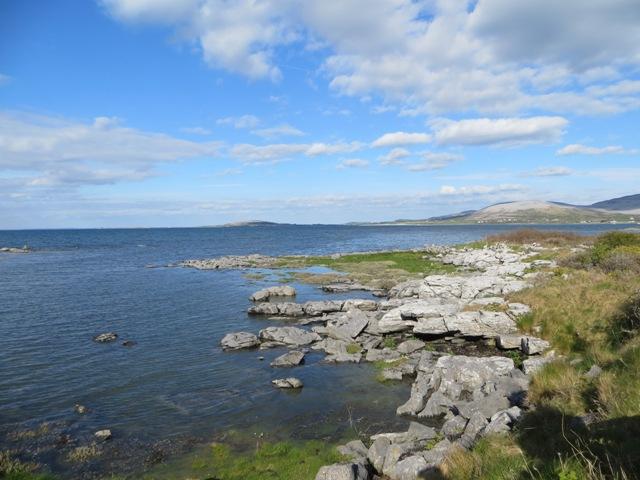 Die Bucht bei Ballyvaughan, sogar hier findet sich das graue Gestein.