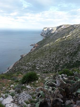 Blick auf die Küste, zu der uns der Weg versperrt blieb.