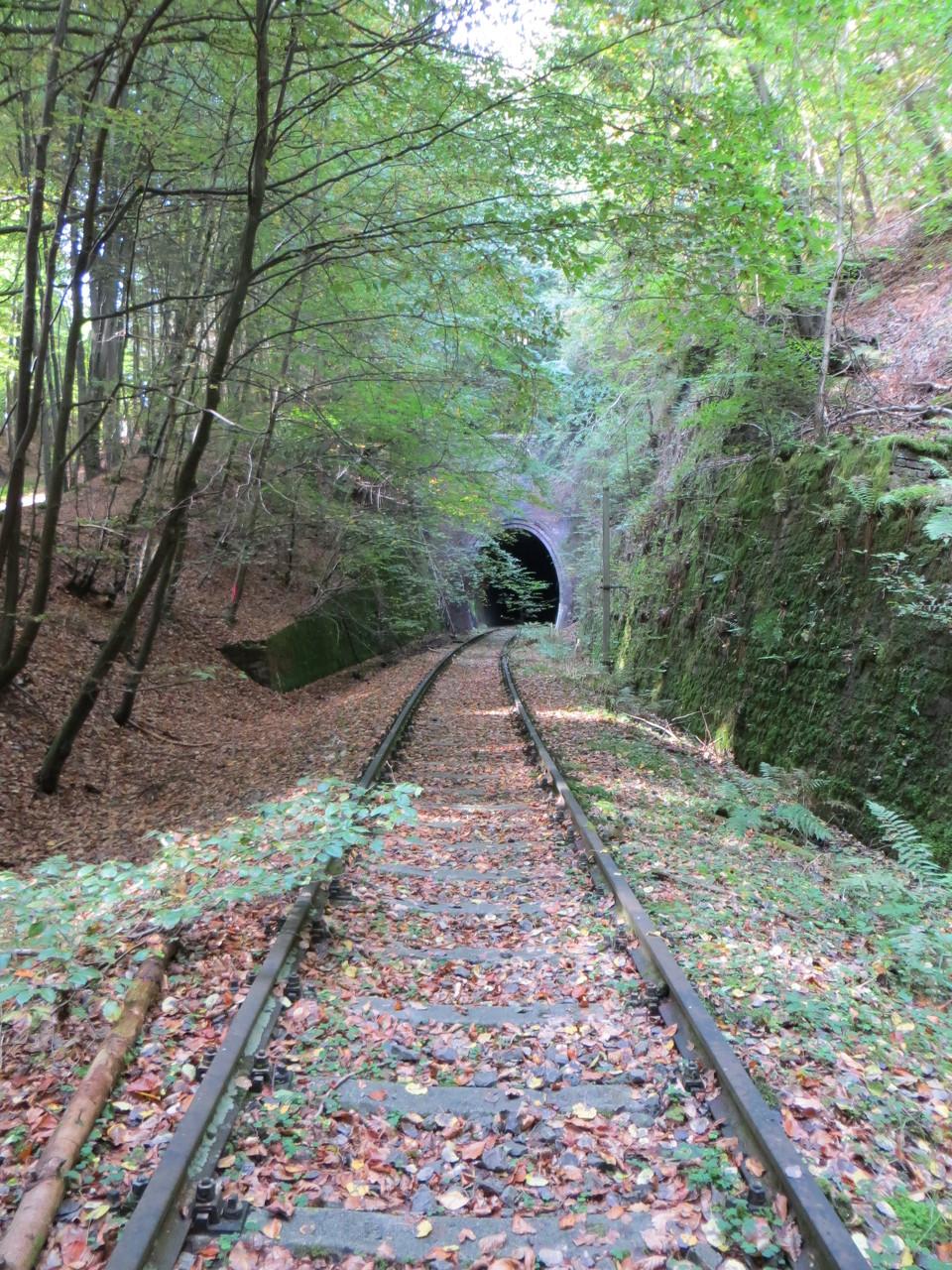 Westportal Stempelkopf-Tunnel
