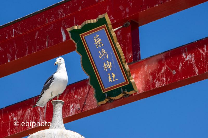 三陸の風 その2 蕪嶋神社