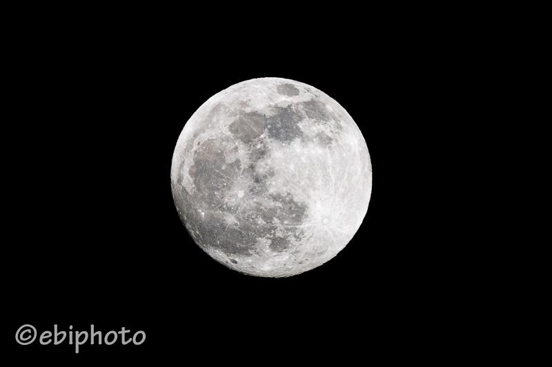 今日の一枚 満月