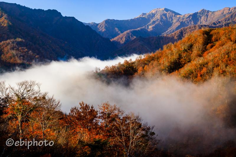 全日本山岳写真展 入選